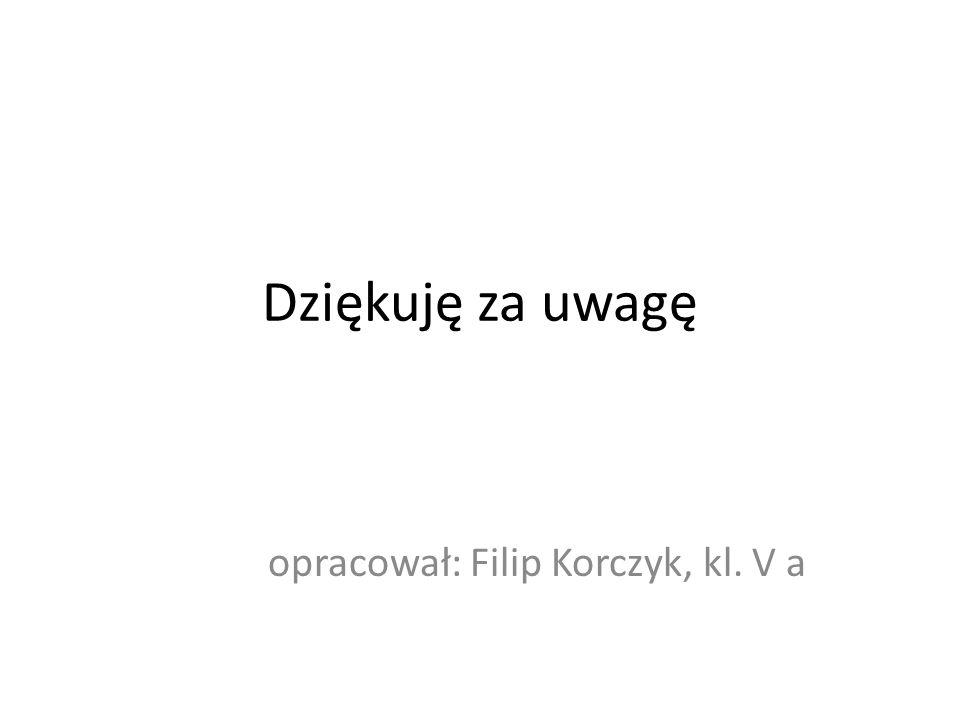 opracował: Filip Korczyk, kl. V a