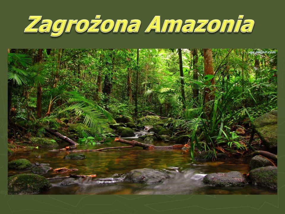 Zagrożona Amazonia