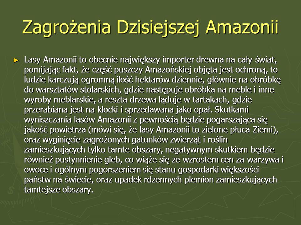 Zagrożenia Dzisiejszej Amazonii