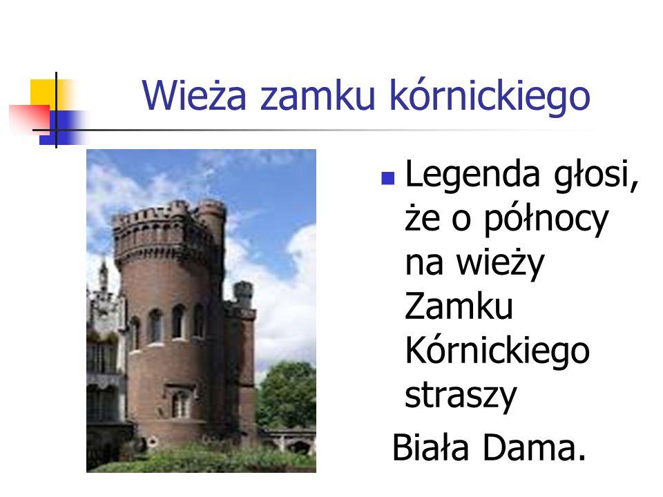 Wieża zamku kórnickiego