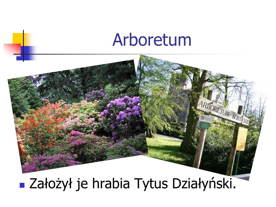 Arboretum Założył je hrabia Tytus Działyński.