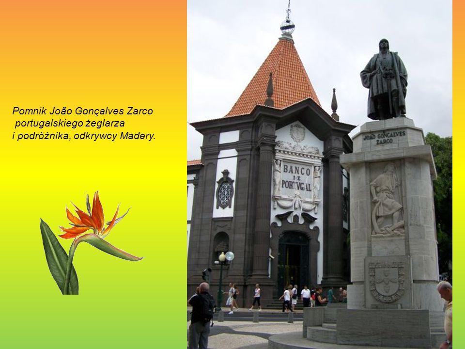 Pomnik João Gonçalves Zarco