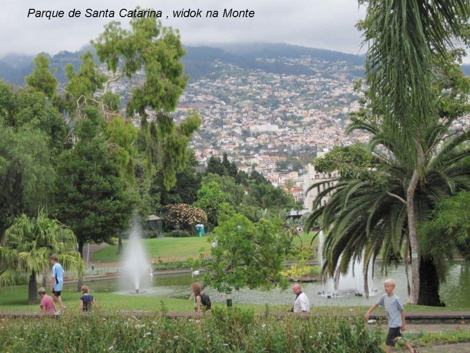 Parque de Santa Catarina , widok na Monte