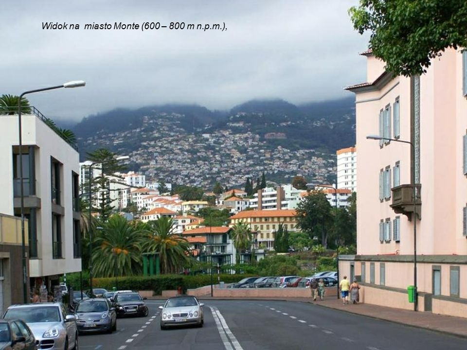 Widok na miasto Monte (600 – 800 m n.p.m.),