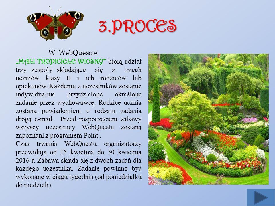3.PROCES W WebQuescie.
