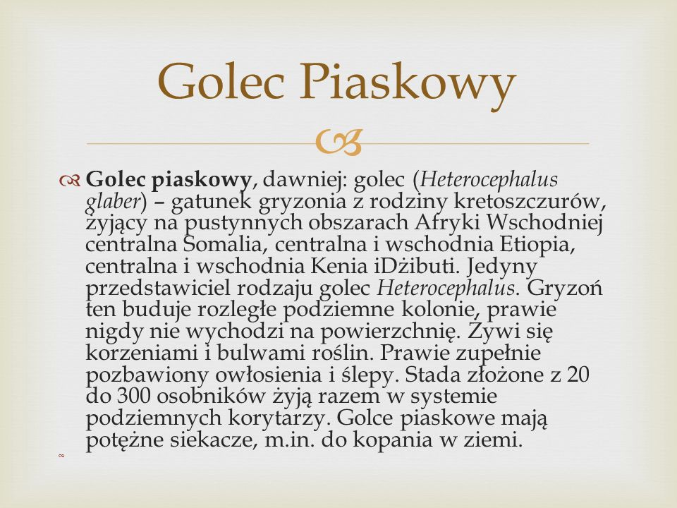 Golec Piaskowy
