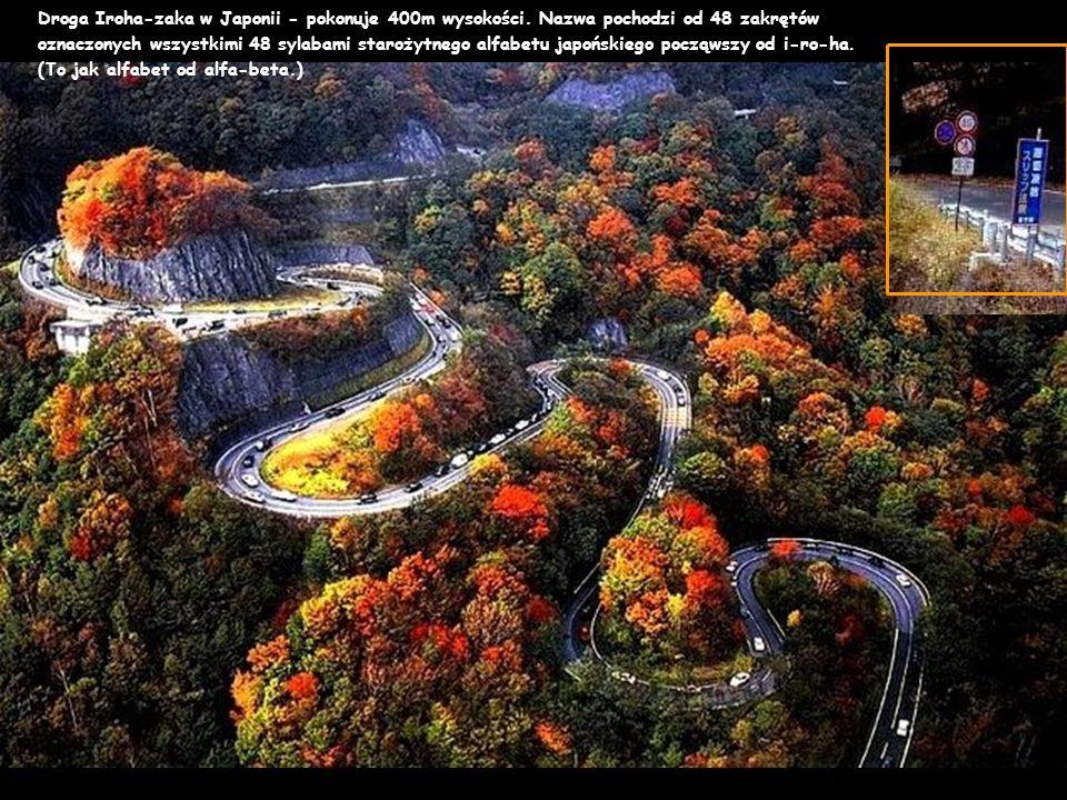 Droga Iroha-zaka w Japonii - pokonuje 400m wysokości