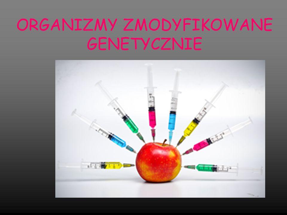 ORGANIZMY ZMODYFIKOWANE GENETYCZNIE