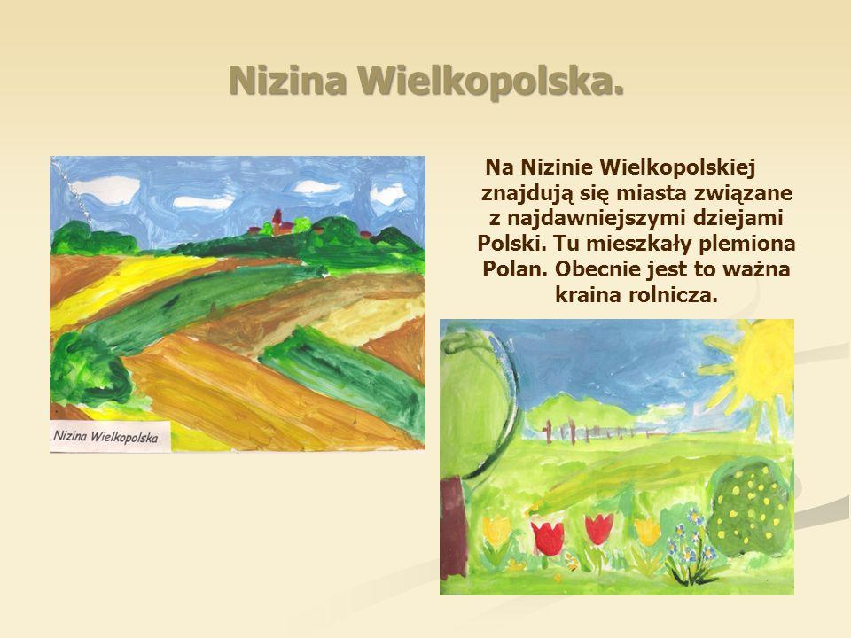 Nizina Wielkopolska.