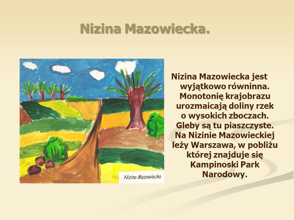 Nizina Mazowiecka.