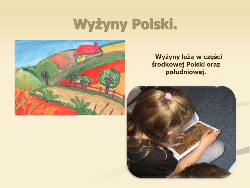 Wyżyny leżą w części środkowej Polski oraz południowej.
