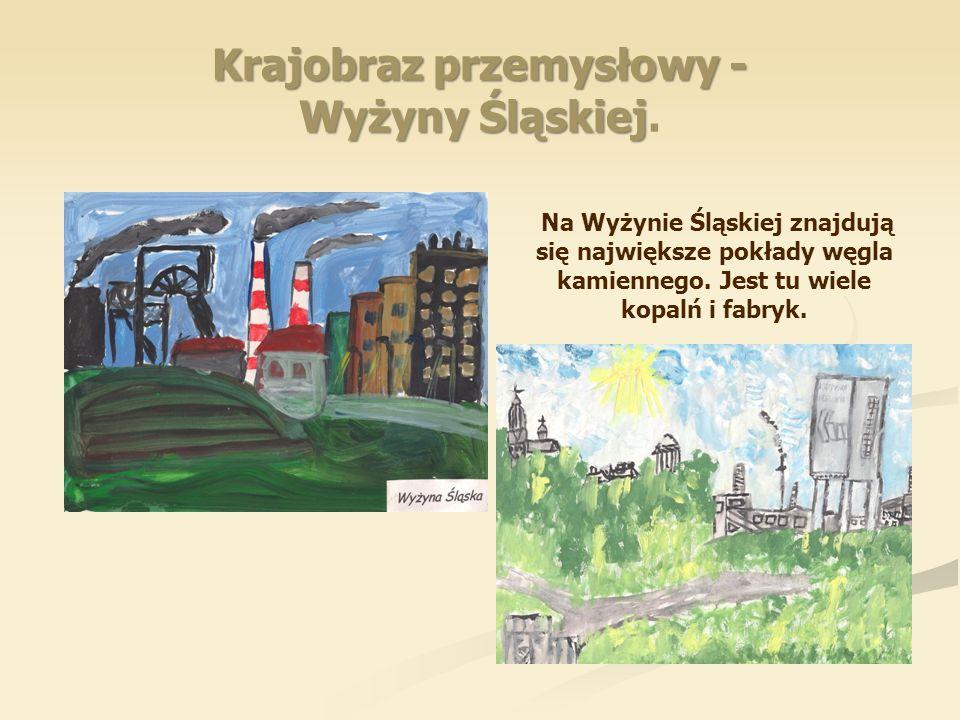 Krajobraz przemysłowy - Wyżyny Śląskiej.