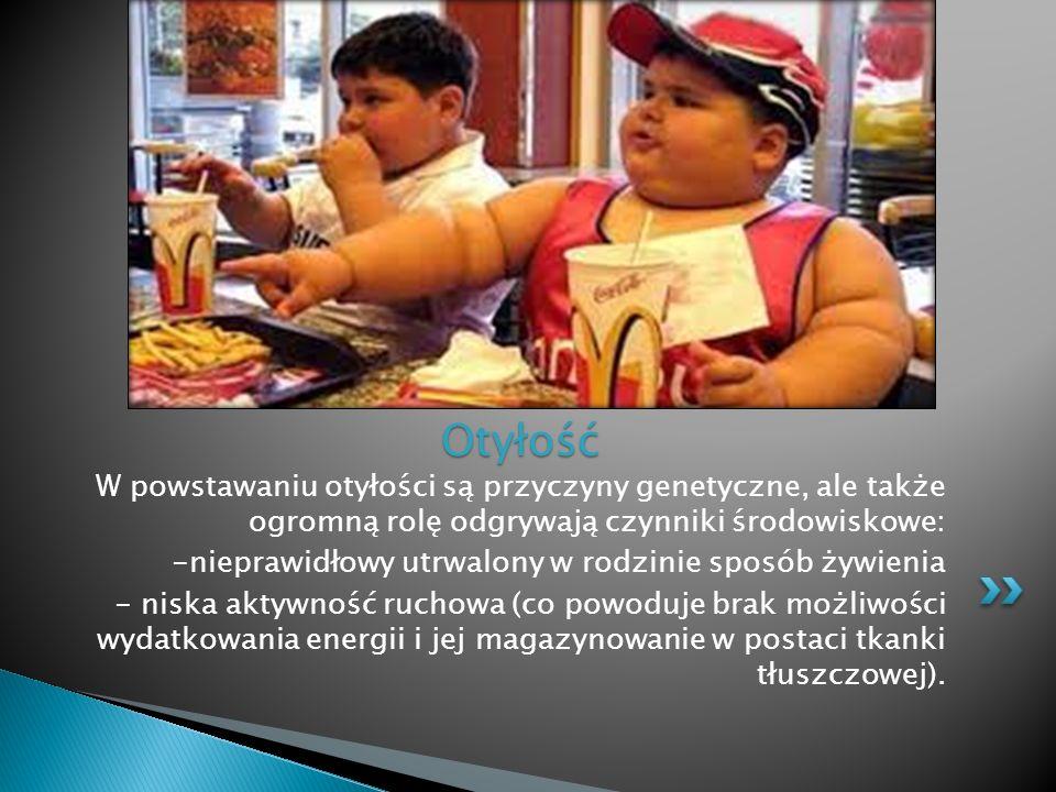 Otyłość W powstawaniu otyłości są przyczyny genetyczne, ale także ogromną rolę odgrywają czynniki środowiskowe: