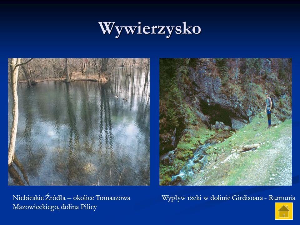 Wywierzysko Niebieskie Źródła – okolice Tomaszowa