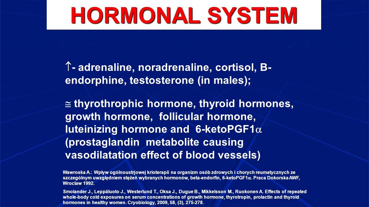 HORMONAL SYSTEM - adrenaline, noradrenaline, cortisol, B- endorphine, testosterone (in males);