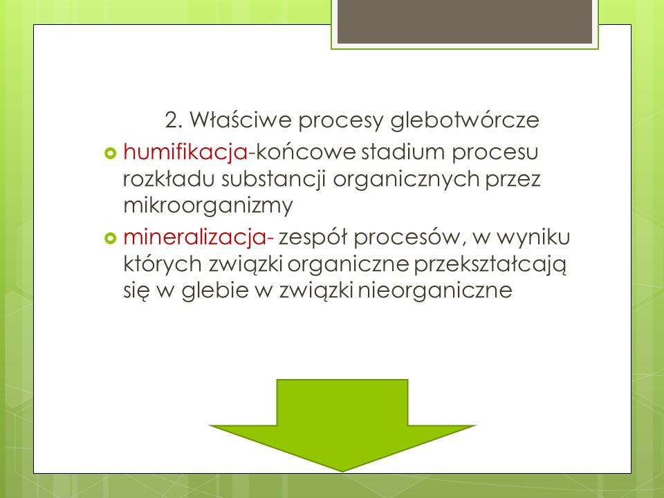 2. Właściwe procesy glebotwórcze