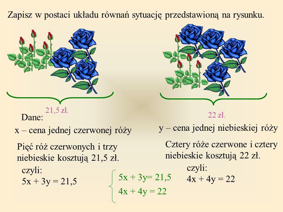 Zapisz w postaci układu równań sytuację przedstawioną na rysunku.
