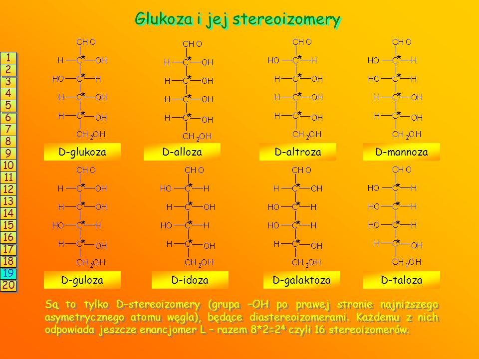 Glukoza i jej stereoizomery