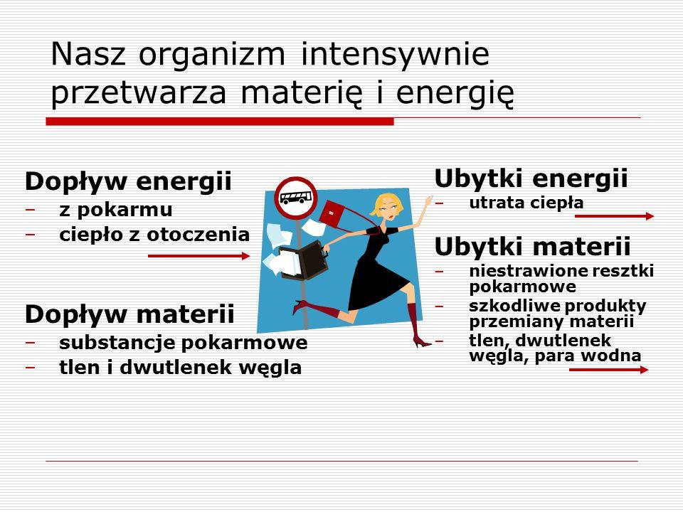 Nasz organizm intensywnie przetwarza materię i energię