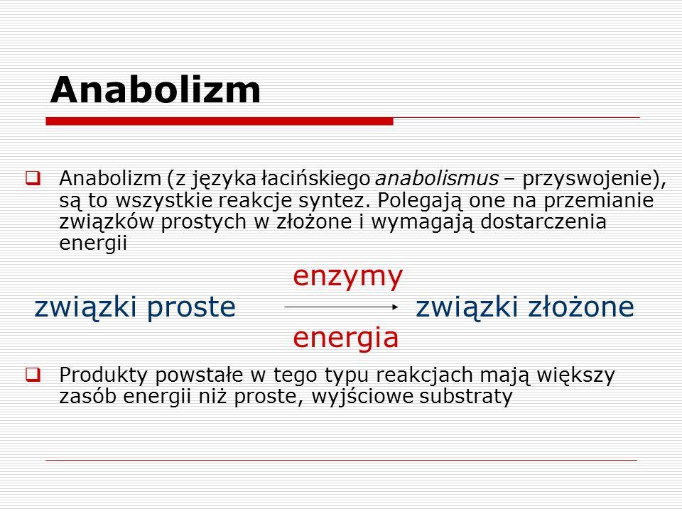 Anabolizm enzymy związki proste związki złożone energia