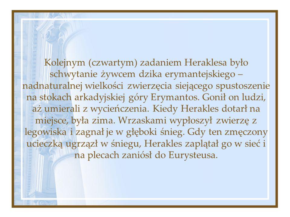 Kolejnym (czwartym) zadaniem Heraklesa było schwytanie żywcem dzika erymantejskiego – nadnaturalnej wielkości zwierzęcia siejącego spustoszenie na stokach arkadyjskiej góry Erymantos.