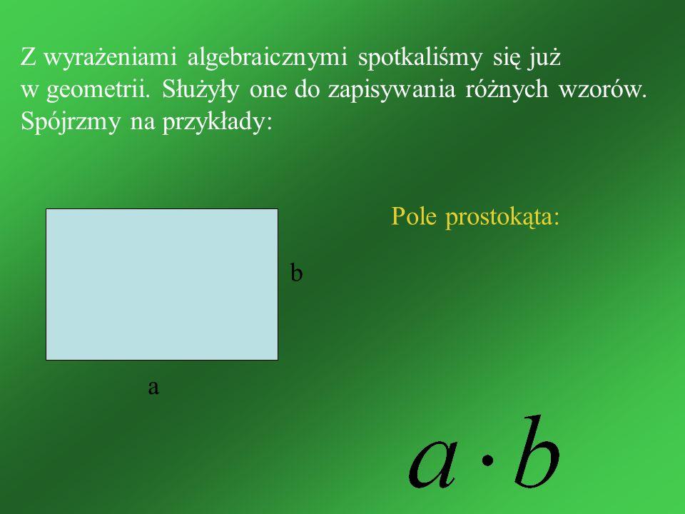 Z wyrażeniami algebraicznymi spotkaliśmy się już w geometrii