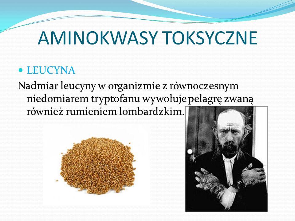 AMINOKWASY TOKSYCZNE LEUCYNA