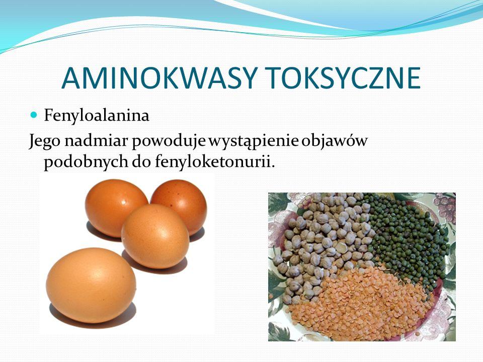 AMINOKWASY TOKSYCZNE Fenyloalanina