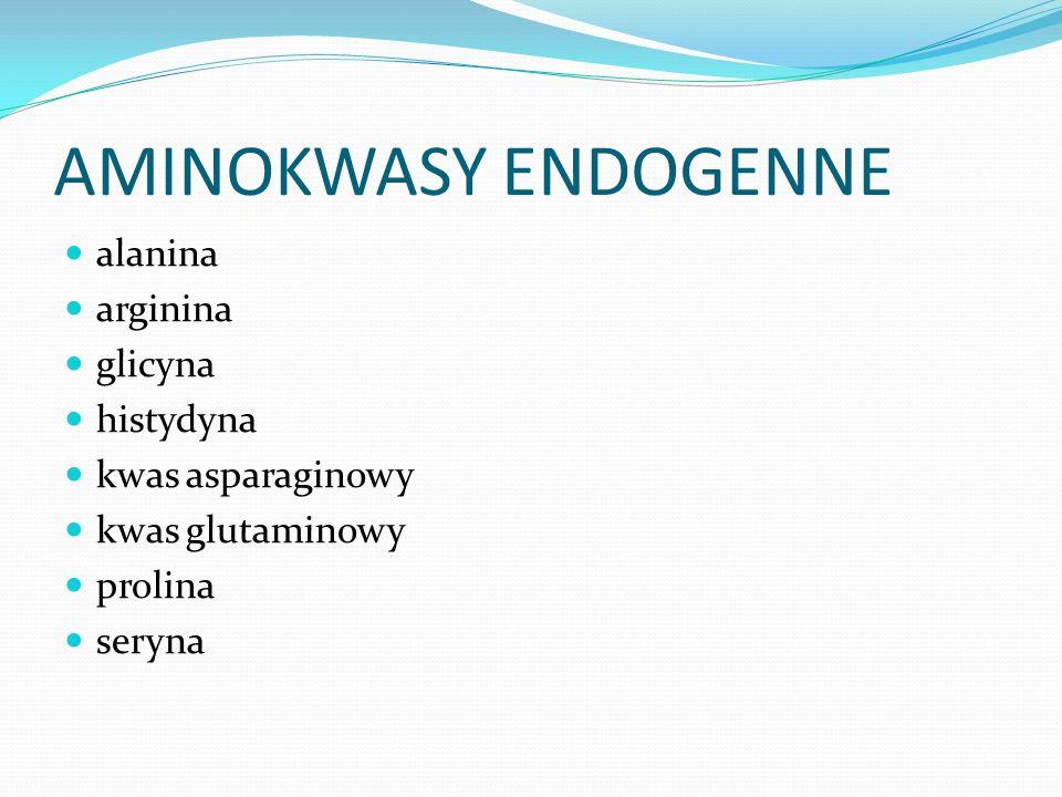 AMINOKWASY ENDOGENNE alanina arginina glicyna histydyna