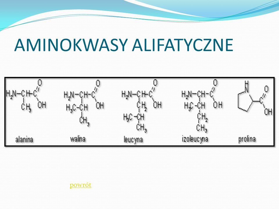 AMINOKWASY ALIFATYCZNE