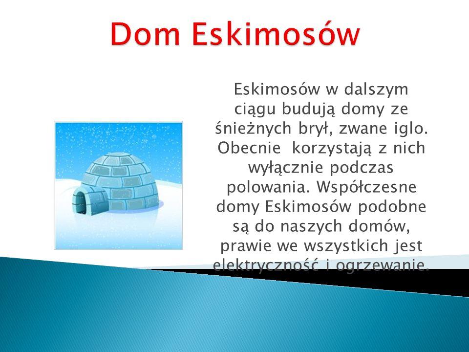 Dom Eskimosów