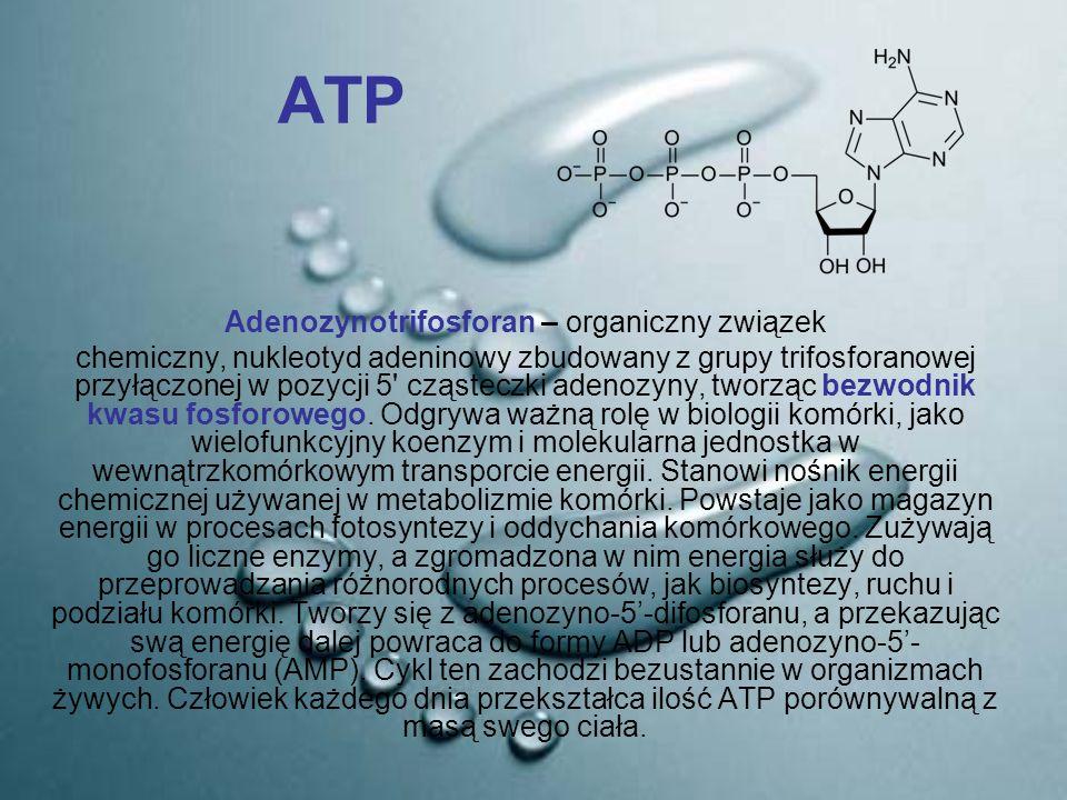 Adenozynotrifosforan – organiczny związek