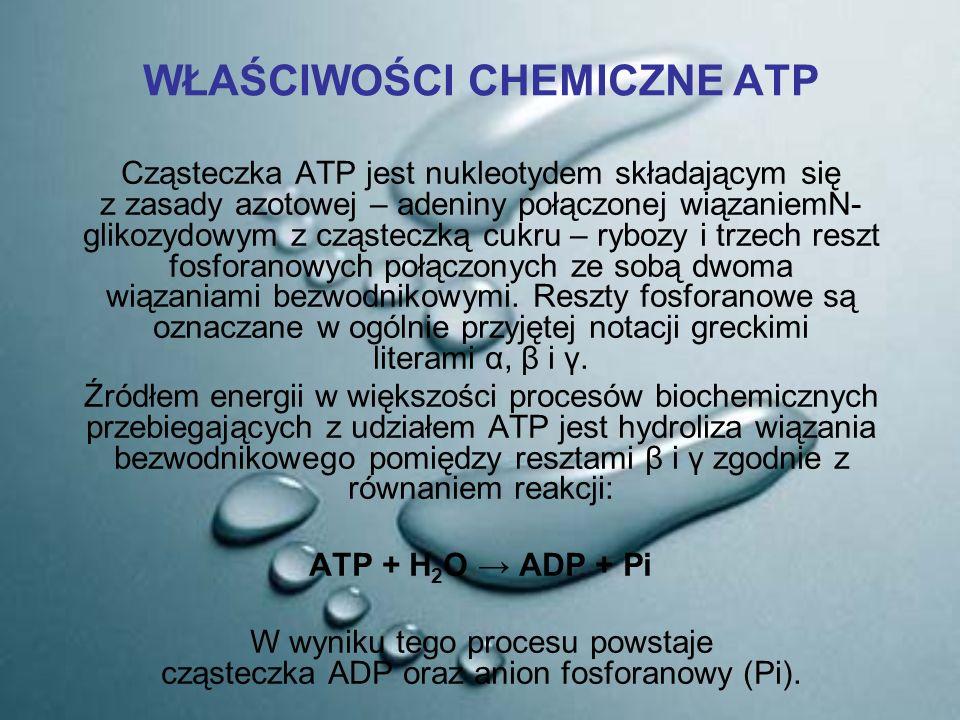 WŁAŚCIWOŚCI CHEMICZNE ATP