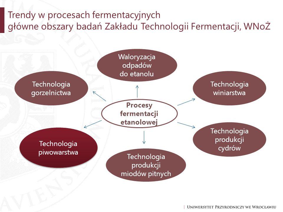Procesy fermentacji etanolowej