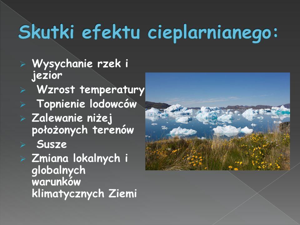 Skutki efektu cieplarnianego: