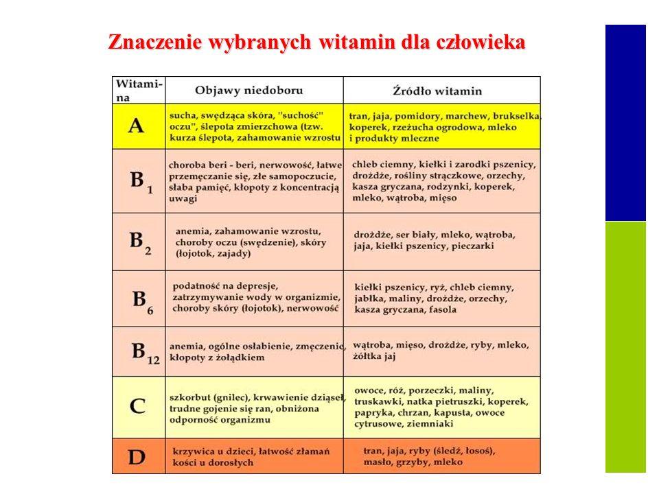 Znaczenie wybranych witamin dla człowieka