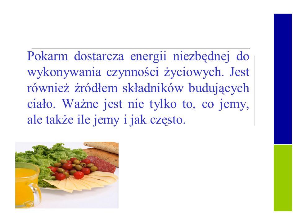 Pokarm dostarcza energii niezbędnej do wykonywania czynności życiowych