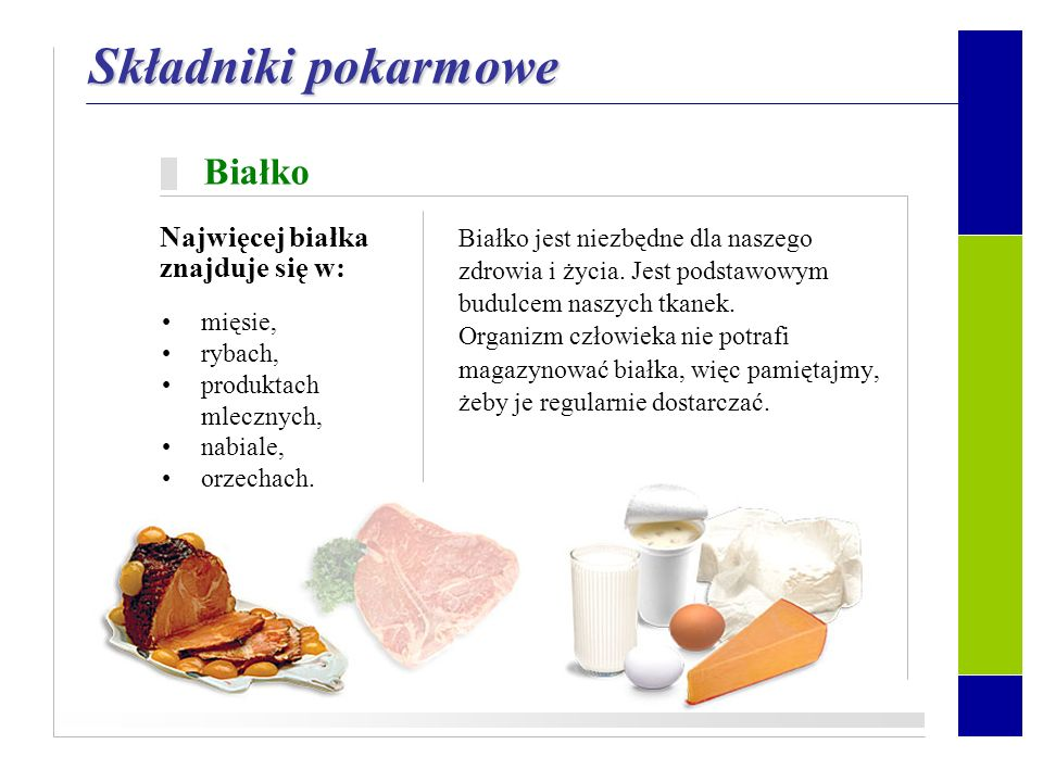 Składniki pokarmowe Białko Najwięcej białka znajduje się w: