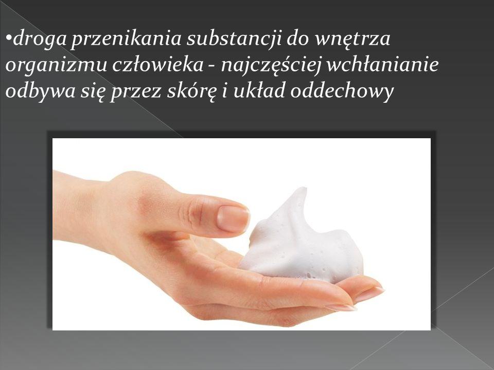 droga przenikania substancji do wnętrza organizmu człowieka - najczęściej wchłanianie odbywa się przez skórę i układ oddechowy