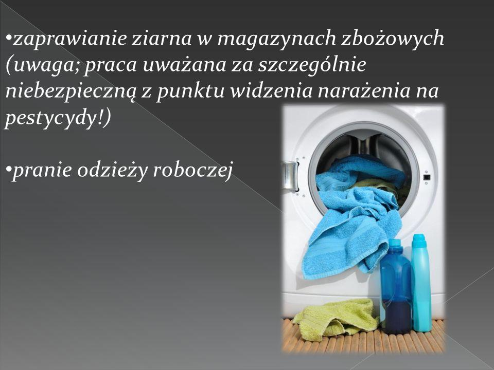 zaprawianie ziarna w magazynach zbożowych (uwaga; praca uważana za szczególnie niebezpieczną z punktu widzenia narażenia na pestycydy!)