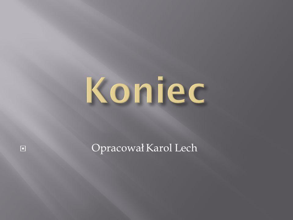 Koniec Opracował Karol Lech