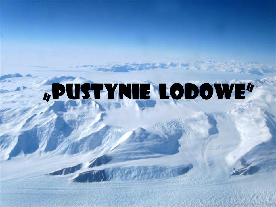 """""""PUSTYNIE LODOWE"""