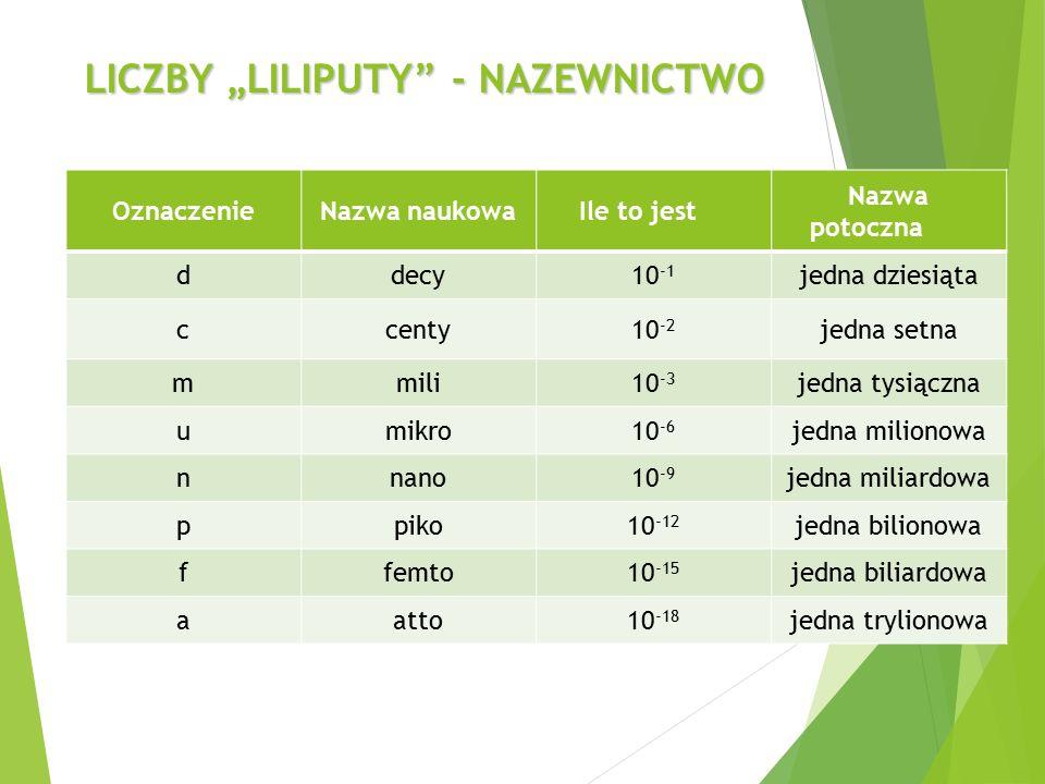 """LICZBY """"LILIPUTY - NAZEWNICTWO"""