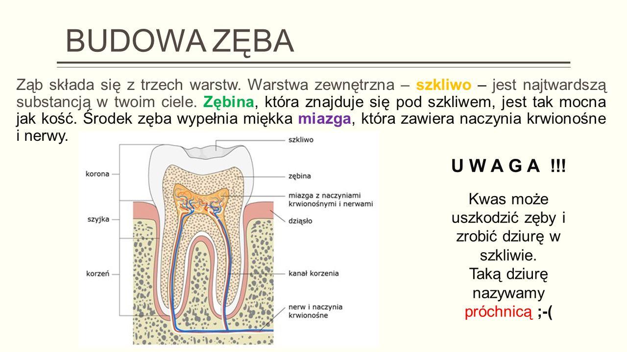 Kwas może uszkodzić zęby i zrobić dziurę w szkliwie.