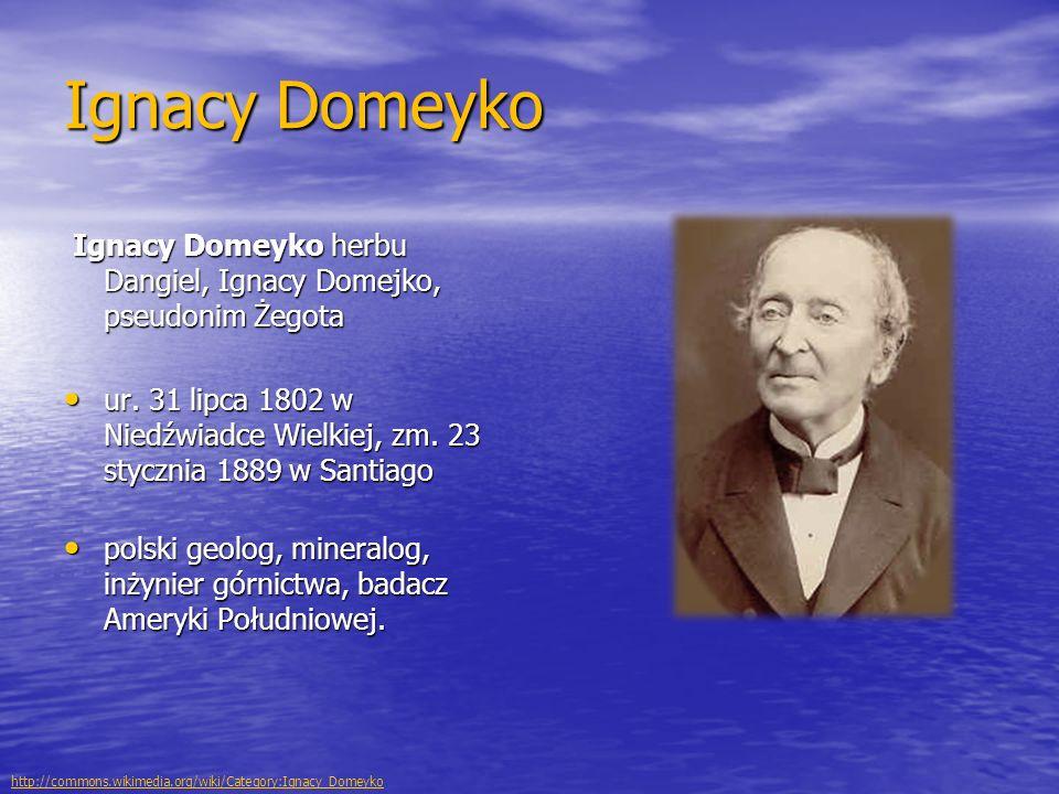 Ignacy Domeyko Ignacy Domeyko herbu Dangiel, Ignacy Domejko, pseudonim Żegota.