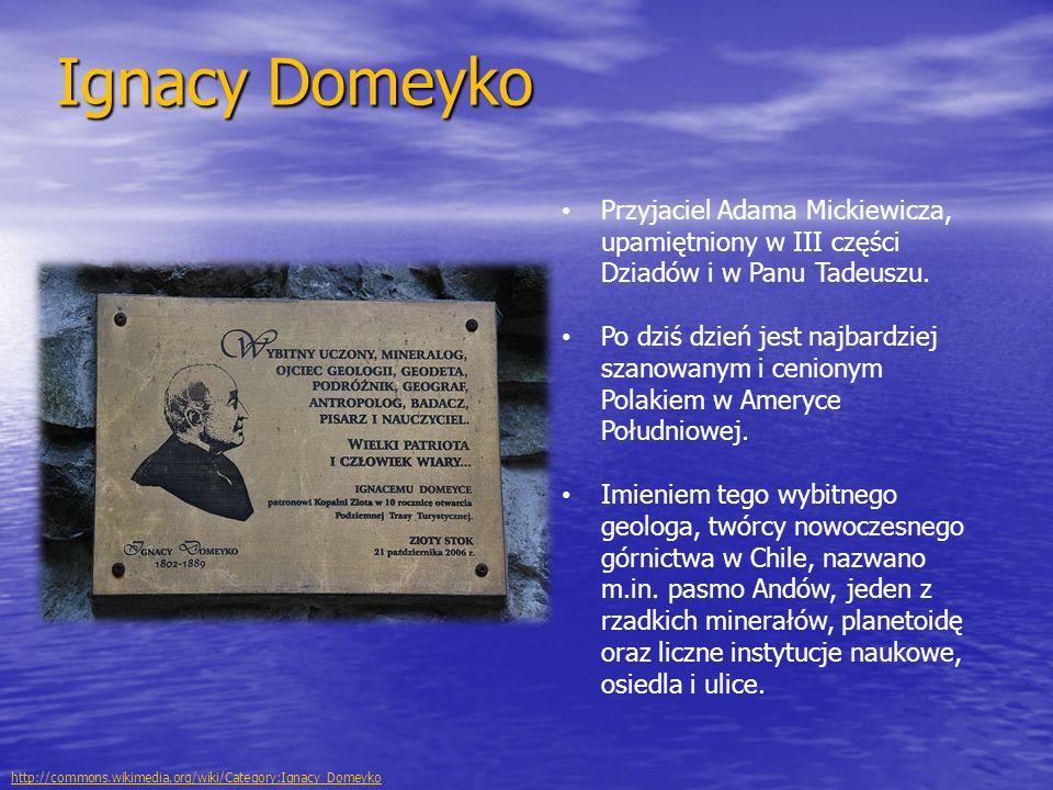Ignacy Domeyko Przyjaciel Adama Mickiewicza, upamiętniony w III części Dziadów i w Panu Tadeuszu.