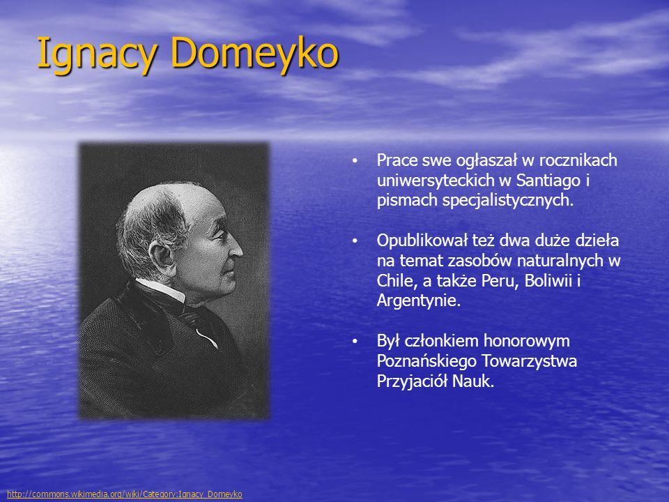 Ignacy Domeyko Prace swe ogłaszał w rocznikach uniwersyteckich w Santiago i pismach specjalistycznych.