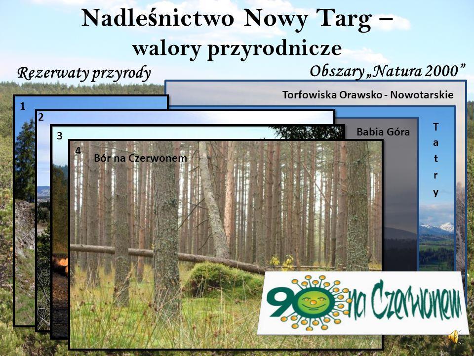 Nadleśnictwo Nowy Targ – walory przyrodnicze
