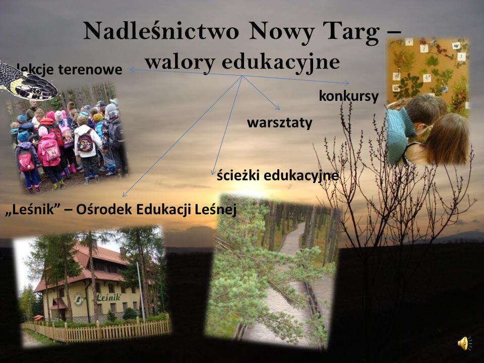 Nadleśnictwo Nowy Targ – walory edukacyjne