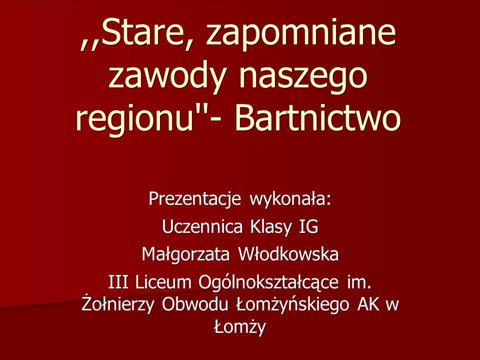 ,,Stare, zapomniane zawody naszego regionu - Bartnictwo